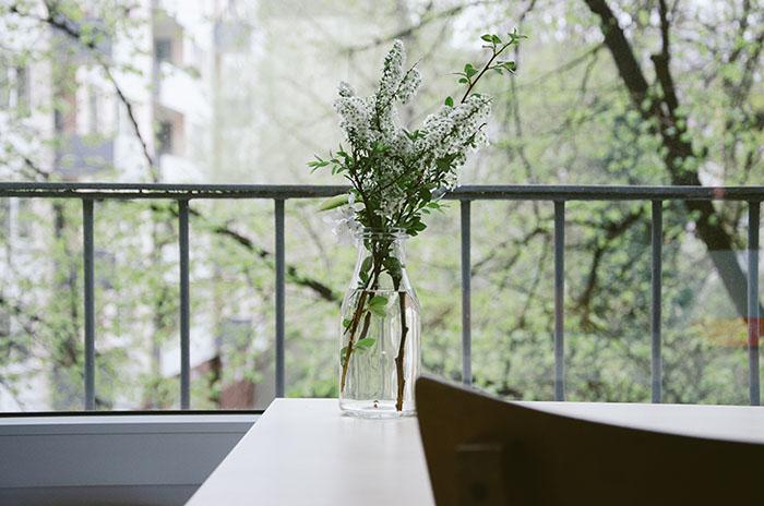 Frühlingsblumen als Landhaus Deko